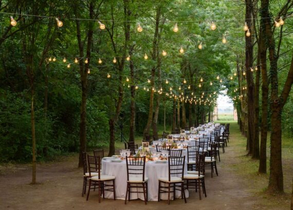 cena bosco